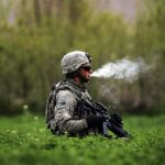 veterans medical weed medicine
